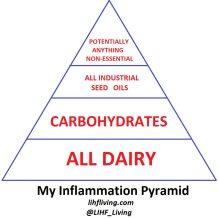 cropped-my_inflammation_pyramid_rev2.jpg
