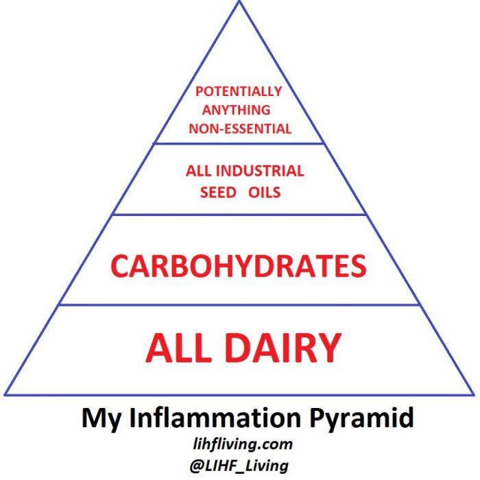 cropped-my_inflammation_pyramid_rev2.jpg