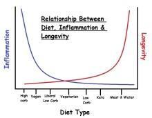inflammation_longevity