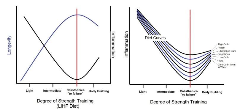 Longevity_Strength_Infla_Diets
